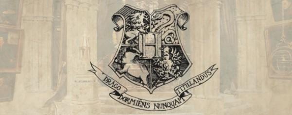 Hogwarts Experience