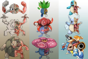 pokemon_banner_down_by_christopher_stoll-dalq2sk